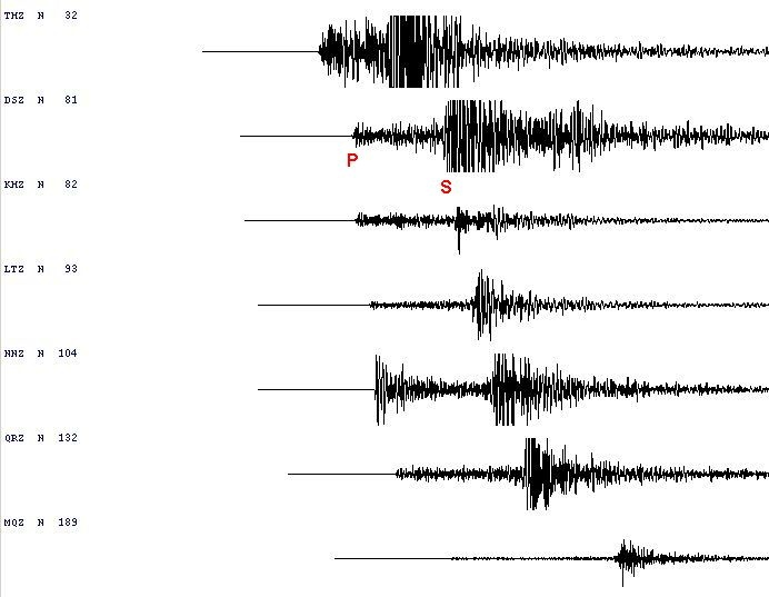 Seismic traces showing P and S arrivals.