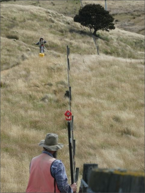Field measurements of offset fences (orange line). Photo by Tim Little