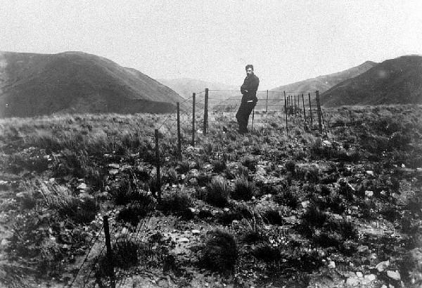 This surveyor stands at a fence that crosses the Hope Fault near Glynn Wye Station. The fence, originally straight, has been kinked to the right by the sideways movement of the land in the 1888 earthquake. [GNS Science]